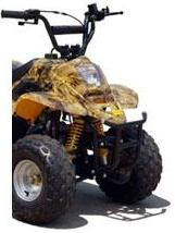 110cc Sport Utility ATV